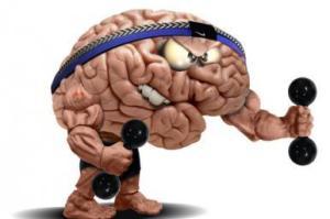 Cérebro exercício